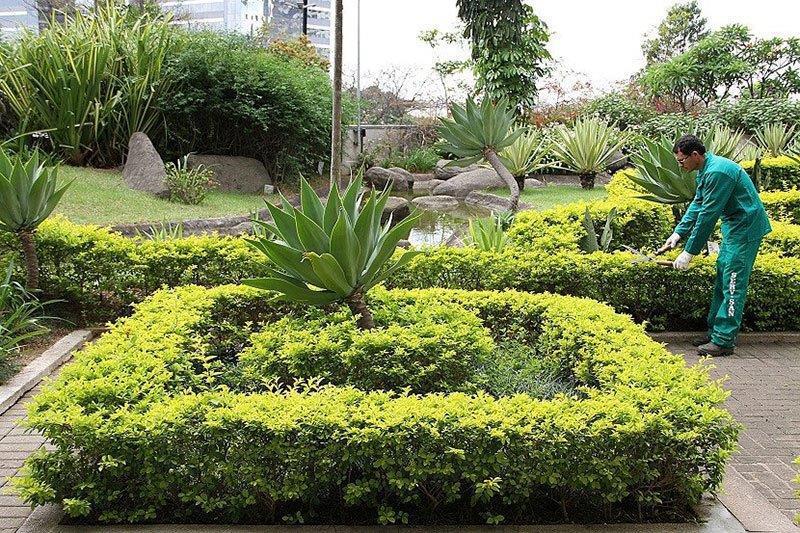Empresa de paisagismo serv san for Empresas de paisajismo