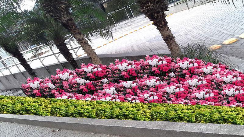 Empresa de jardinagem e paisagismo