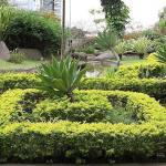 Empresa de jardinagem e paisagismo em sp