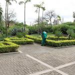 Empresa de limpeza e jardinagem