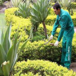 Execução e manutenção de jardins